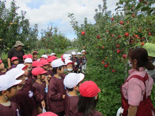 5才 りんご公園